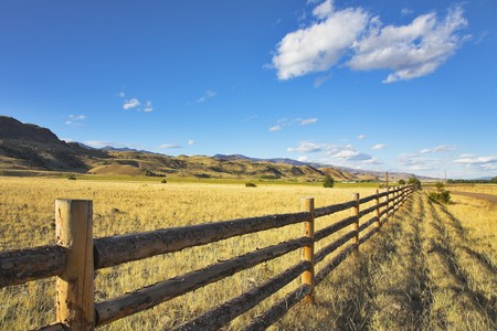A fence for cows on the American farm Stock Photo - 4291870