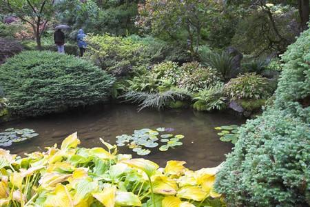 Tourists walk under a fine rain in Japanese  garden photo