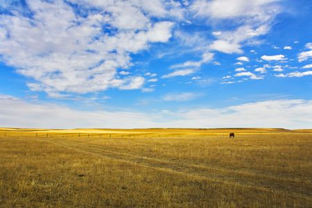 The grandiose sky of Montana above the American prairie in October Stock Photo - 4862095