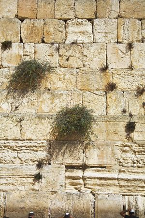 The western wall of the Jerusalem temple shined by the sun photo