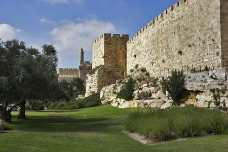 A green lawn and trees at a wall of Jerusalem near Davids tower