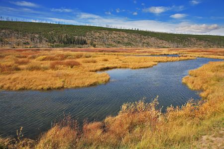 Silent soft autumn day - plain, a yellow grass and a stream in Yellowstone national park Stock Photo - 5471526
