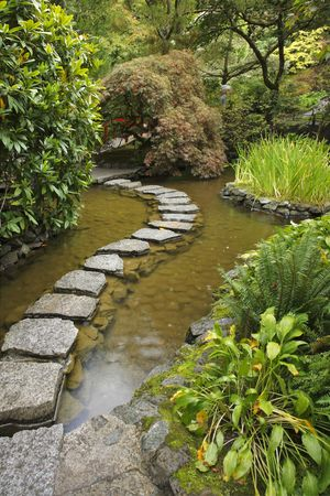 Traditional Japanese garden. A stream and a decorative path from stones Stock Photo - 5775659