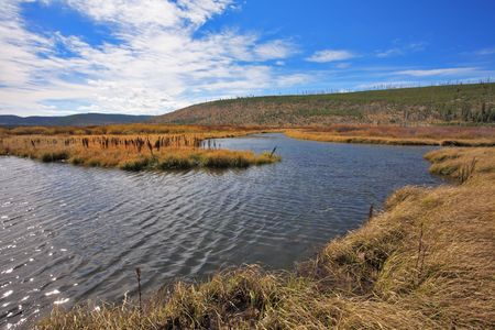 Plain, superficial stream and yellow autumn grass in park Yellowstone in the USA photo