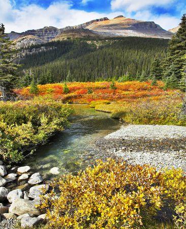 Shallow small river, shallows and multi-coloured autumn grasses on coast photo