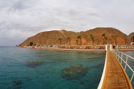Coral reeves at coast of the resort city of Eilat photo