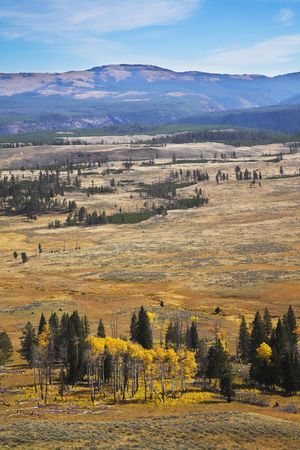 grandiose: Grandiose autumn landscape in Yellowstone national park