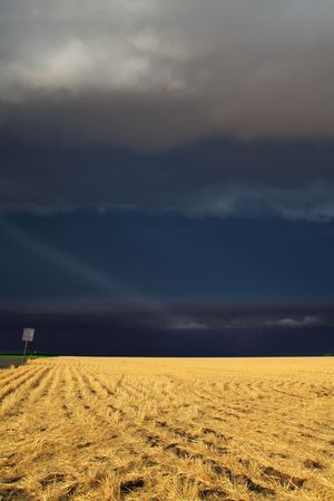 trembling: The thunder-storm in a countryside in state of Montana begins