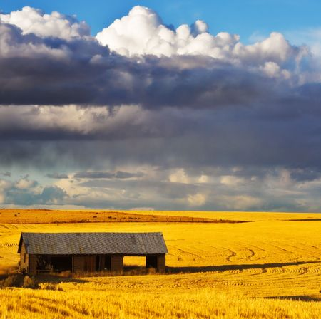Empty wooden shed in field after harvesting Stock Photo - 6730501