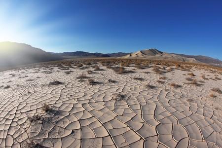 Sunrise in Death Valley. Dry brush on white cracked soil. Rhotograph Fisheye lens Stock Photo - 7151808
