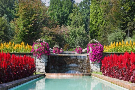 maggiore: The shore of Lake Maggiore, Villa Taranto. Huge beautiful park-garden with flowers and fountains