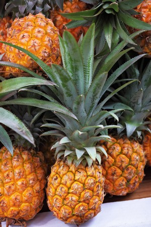 sukkoth festival: The picturesque holiday bazaar stall on the eve of Sukkoth. Pineapples