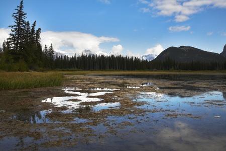 bogs: Idyllic warm autumn day on bogs in wild district