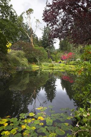 landscaped garden:  Phenomenally beautiful landscape in well-known park Butchard garden in Canada