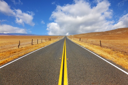 Magnificent American road to the Californian steppe photo