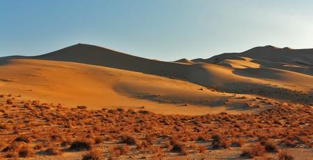 duna: Magn�ficas dunas arenosas mayor Eureka en Parque Nacional de Walley muertos en la salida del sol Foto de archivo