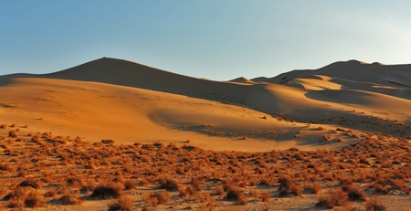 Magnificent greater sandy dune Eureka in Dead Walley national Park on sunrise