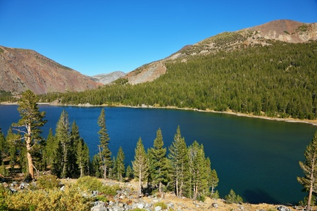Lake Tioga on pass in an environment of picturesque mountains. Warm serene autumn day in Yosemite park of the USA, California Standard-Bild