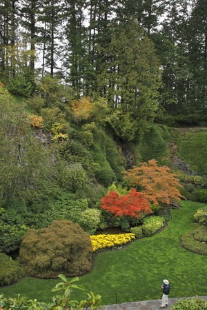 admired: The admired tourist with the camera in well-known Butchard-garden in Canada