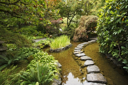 Traditional Japanese garden. A stream and a decorative path from stones