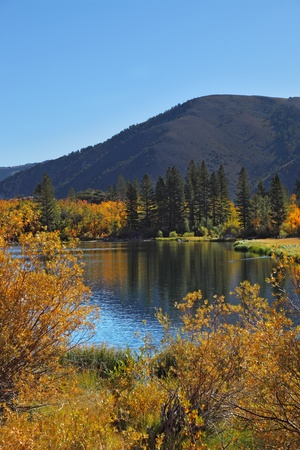 grandiose: Grandiose multi-colour autumn on Northern lake. The USA Stock Photo