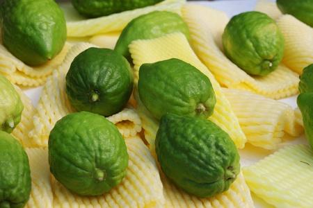 etrog: Bazaar on the eve of Sukkoth. The fruit of the beautiful tree - etrog Stock Photo