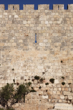 The walls of Jerusalem, the eternal covered with soft rays of the sunset. A lovely summer day photo