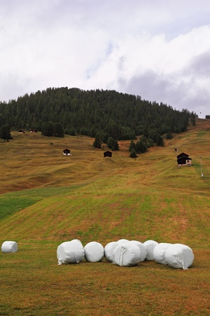 accurately: Accurately packed haystacks on charming mountain meadows. Switzerland, the Alpes