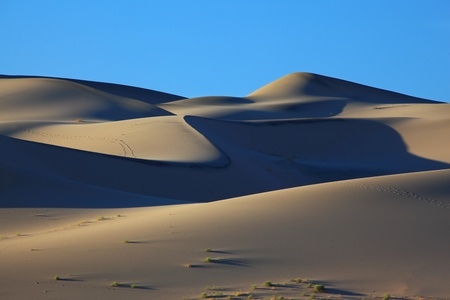 sandhills: Cold dark blue shades and traces of animals on sand of the White dune Eureka. Deadh Valley of the USA