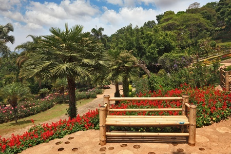 A masterpiece of landscape design - a huge and beautiful park in Thailand. Palm trees, flower beds and a comfortable bench photo