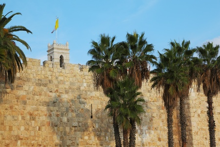 Walls of Jerusalem ancient. Palm trees and flags Stock Photo - 11839948