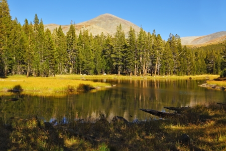 A quiet lake, surrounded by woods, in the mountains of Yosemite Park. Early autumn morning photo