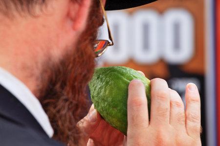 etrog: Bnei Brak - September 22: An orthodox Jew in glasses  picks citrus before the holiday of Sukkot September 22, 2010 in Bnei Brak, Israel