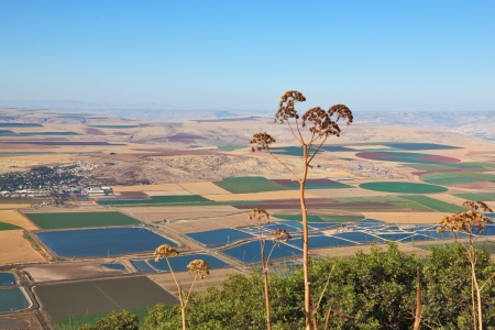 Blooming Isreel Valley in Israel. Green, yellow and sky-blue field, were photographed from the hill Gilboa photo