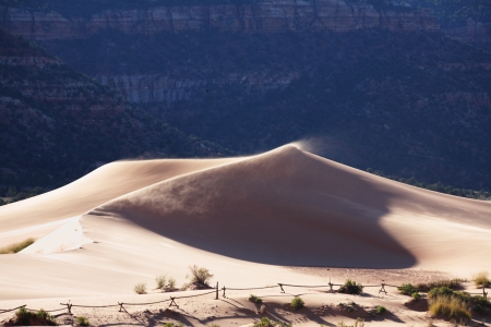 Reserve Coral sand dunes in the U S   Sunrise, shadows and light Stock Photo - 16658957