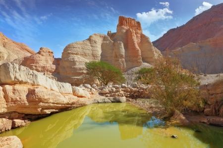 Canyon dans les montagnes antiques de la mer Morte. Une grande piscine avec les restes de l'eau verte Banque d'images