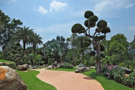A masterpiece of landscape design - a huge and beautiful park in Thailand. Palm trees and flowers  photo