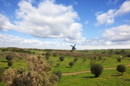 Picturesque windmill on horizon. The rural footpath crosses a meadow with green trees photo