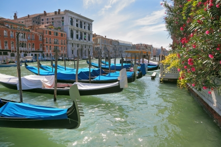Wonderful holiday in Venice  Graceful gondolas are moored at magnificent ancient palaces  photo