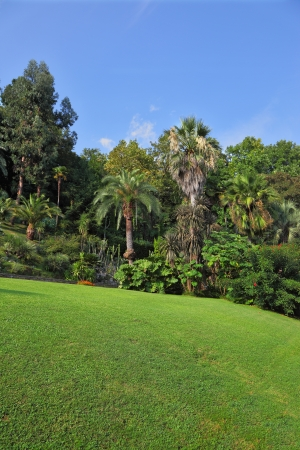 Wonderful vibrant flowerbeds and green grassy lawn in an exotic park. Lake Como, Villa Carlotta  photo