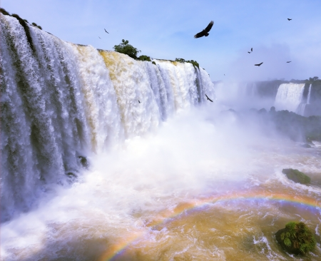 The most high-water waterfall in the world - Iguazu. White whipped foam of water and a thin mist over the water.  Between a waterfall and a rainbow fly huge Andean condors. The picture is taken by lens Fisheye photo
