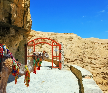 Decorative red gate with a cross on a mountain road going to the temple. Wadi Kelt near Jerusalem. Camel dromedary in the beautiful blanket for transportation of tourists and pilgrims photo