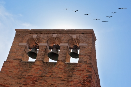 campanile: A triangular flight of migratory birds flying over the bell tower in Venice  Sunny Day
