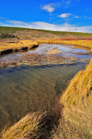 superficial: Plain, superficial stream and yellow autumn grass in park Yellowstone in the USA