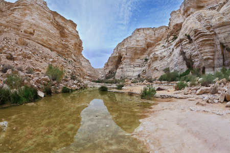 canyon negev:  Magnificent canyon, creek and picturesque waterfall. Ein Avdat National Park in the Negev desert Stock Photo