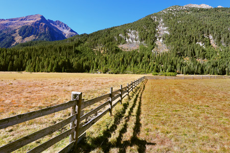 fence: Alpine Valley in Austria. National Park Krimml waterfalls. Scenic farm fields blocked by the wooden fence. Steep mountain slopes overgrown with coniferous forests