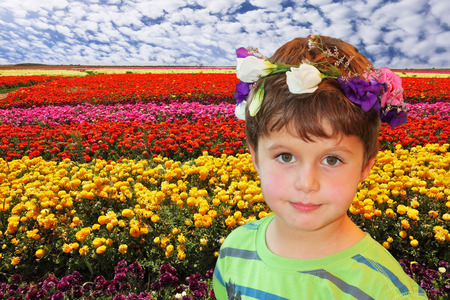 Field of multi-colored decorative buttercups Ranunculus Bloomingdale. Handsome boy in wreath of flowers posing on field background photo