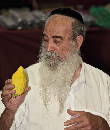 sukkot: Bney-BRAK, ISRAELE - 17 settembre 2013: la Grande mercato alla vigilia della festa ebraica di Sukkot. L'uomo anziano bello con la barba e dai capelli grigi in zucchetto sceglie un agrumi