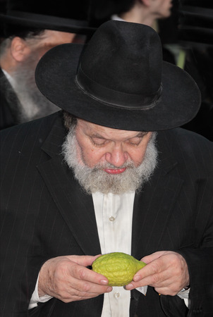 sukkoth festival: BENE - BERAK, ISRAEL - SEPTEMBER 17, 2013:  The elderly man with gray-haired beard chooses a citrus.  Big market on the eve of the Jewish holiday of Sukkot