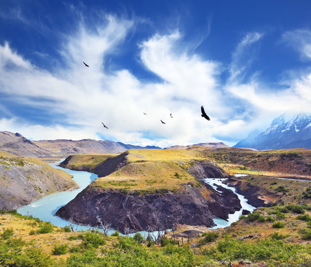 bending: National Park Torres del Paine, Patagonia, Chile. The river bends between the hills, forming a Horseshoe Paine. Huge black Andean condors flying over water Stock Photo